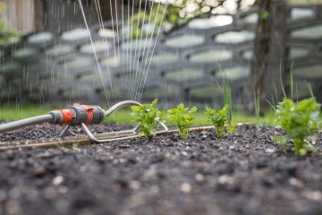How to Set Timers for Sprinklers in a Vegetable Garden