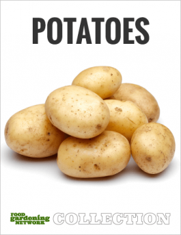 How to Grow Potatoes—Everything About Growing and Enjoying Spuds
