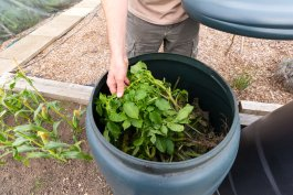 Easy Composting at Home: 5 Ways to Compost from Hardest to Easiest