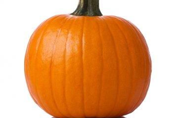 Mid-size pumpkin