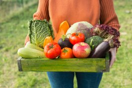 10 Things to Know Before Growing Organic Vegetables