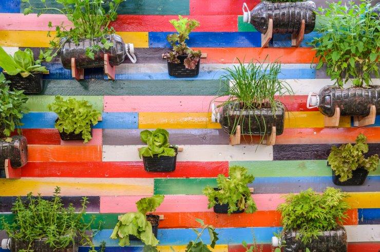Homemade vertical herb garden