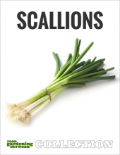 Food Gardening Network Scallions Collection