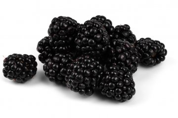 Arapaho blackberries
