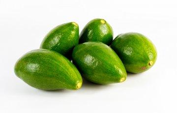 West Indies avocado variety.