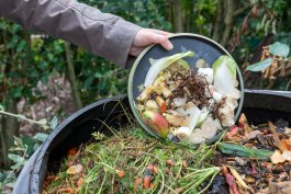 How to Keep an Odor Free Compost Bin in Your Home
