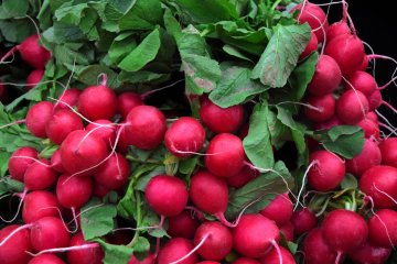 The Easiest Fruits and Vegetables to Grow