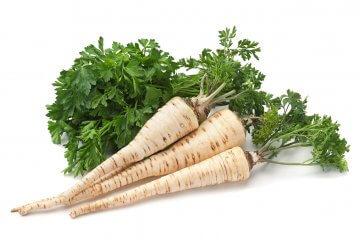 Hamburg rooted parsley