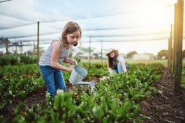 How to Water Your Garden for the Best Vegetable Crops