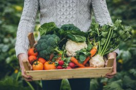 How to Get Into Organic Planting Without Spending a Fortune