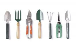 5 Garden Hand Tools Every Greenthumb Should Have