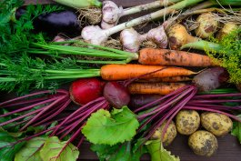 The Best Heirloom Vegetable Plants to Grow