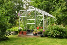The Best Vegetables to Grow in a Greenhouse
