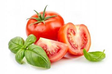 The Biggest Basil and Tomato Companion Planting Benefits
