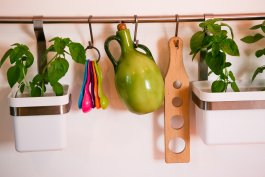 How to Create a Living Wall Herb Garden Inside Your Home