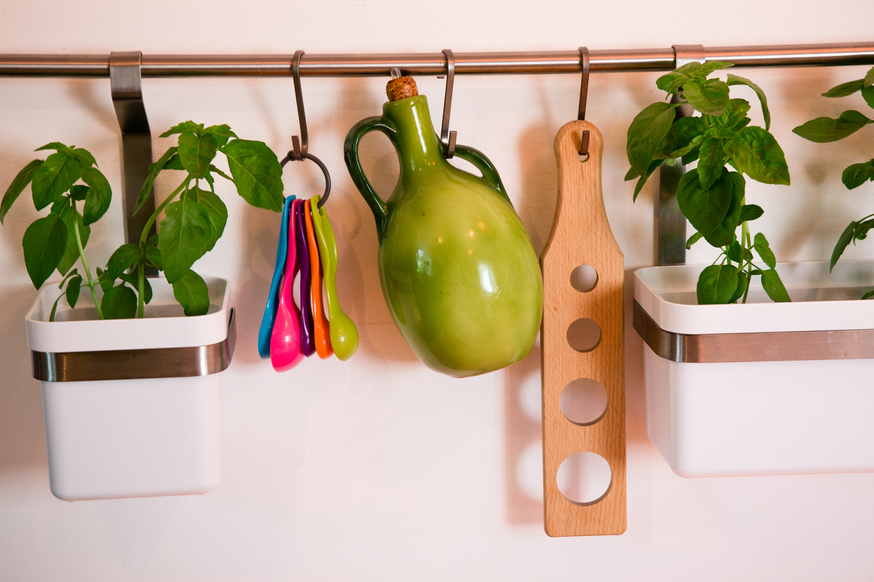 living wall herb garden
