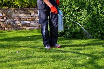 The Best Weed Killer Sprayer for a Vegetable Garden