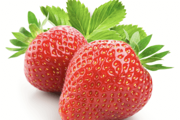 Chandler Strawberries