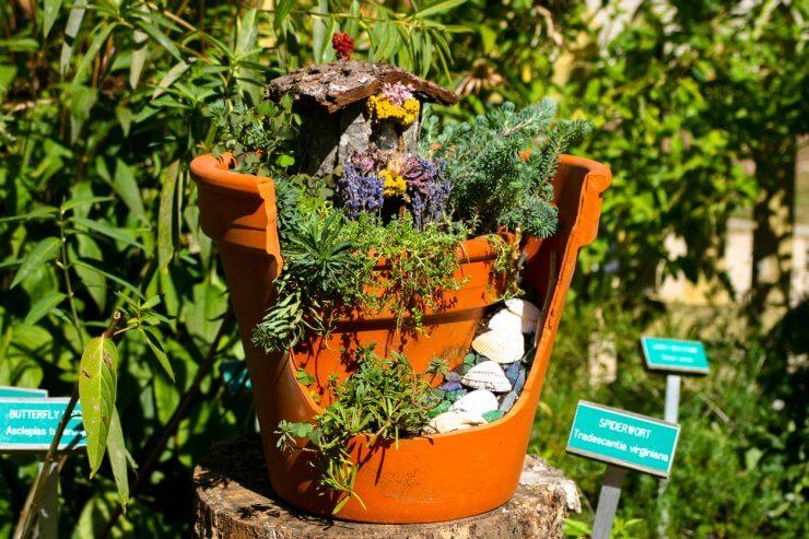 kids herb garden