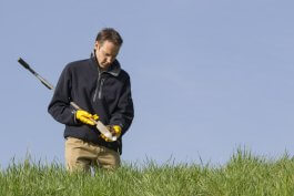 Is it Safe? How to Test Soil Quality Before Growing Edible Plants