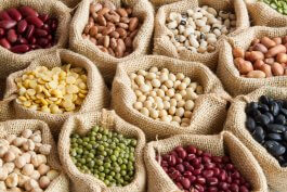 How to Select Good Seeds for Planting & What Bad Seeds to Avoid