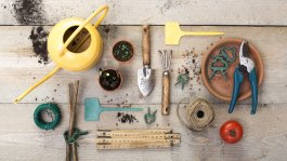 3 Tools Needed to Start a Garden and 3 You Really Don't Need