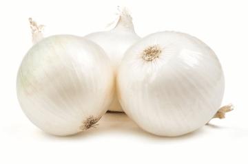 Early White Grano Onions