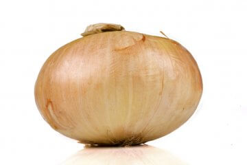 Yellow Granex Onions