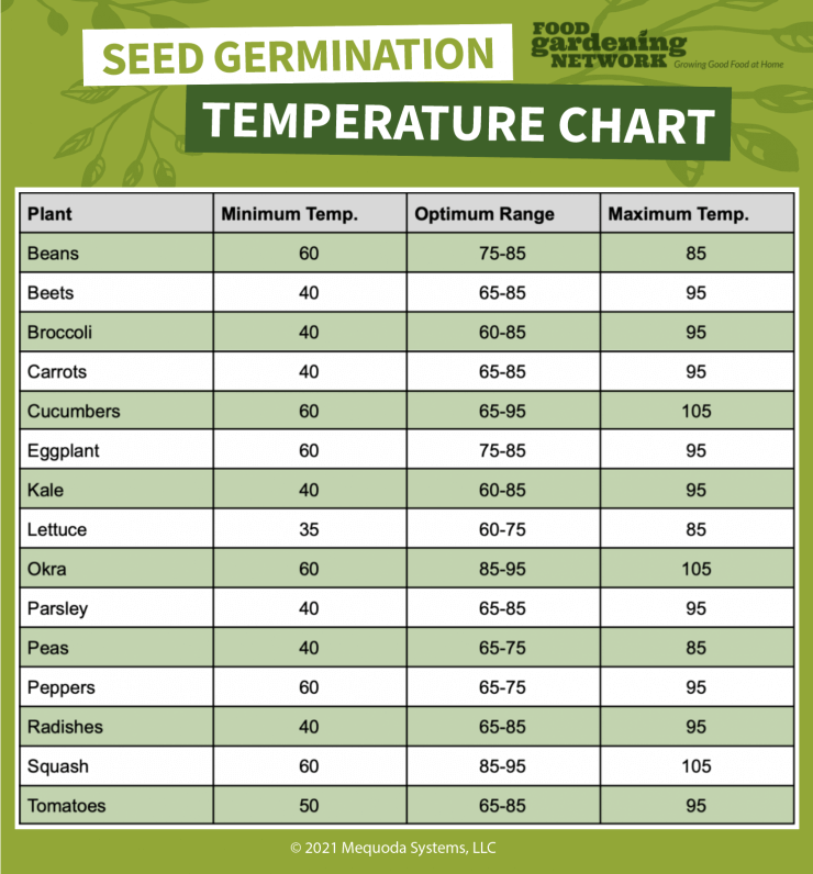 Seed Germination Temperature Chart