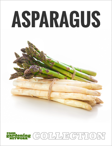 Asparagus Collection Cover