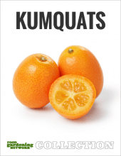 Kumquats Collection Cover