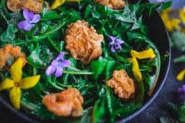 Backyard Dandelion Greens Salad with Dandelion Fritters