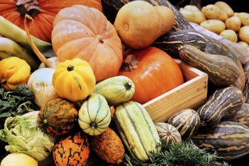 7 Tips for Storing Squash No Matter What Type