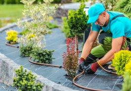3 Benefits of a Homemade Irrigation System for Vegetable Gardens