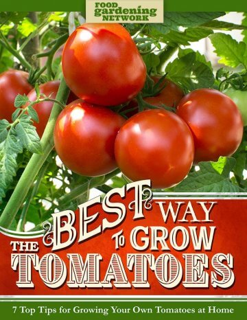 The Best Way to Grow Tomatoes