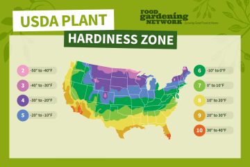 What is My USDA Planting Zone?