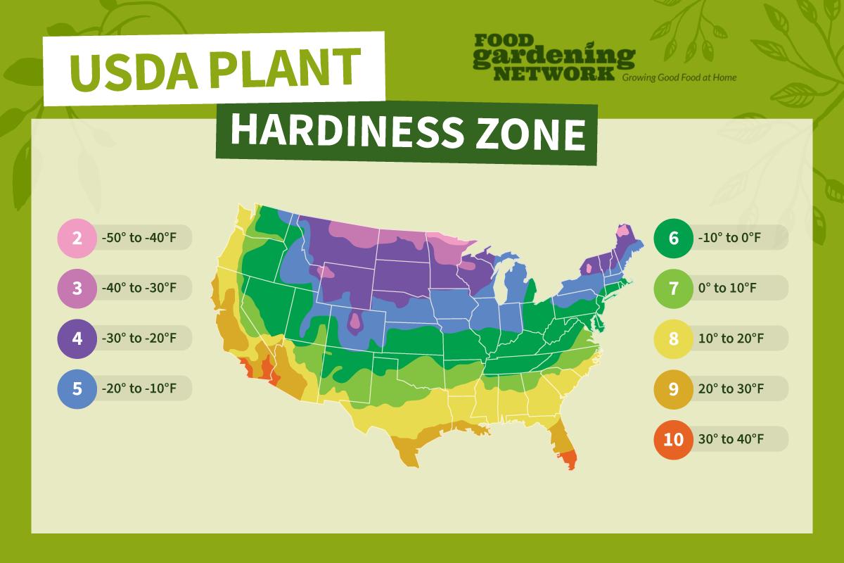 USDA planting zone