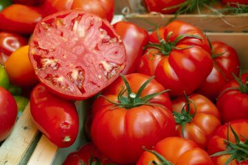 The 15 Best Beefsteak Tomatoes To Grow in 2021