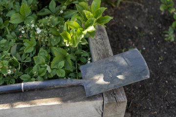 When and How to Use Compost in the Spring