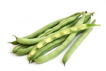 Kentucky wonder 125 long-podded bush green beans