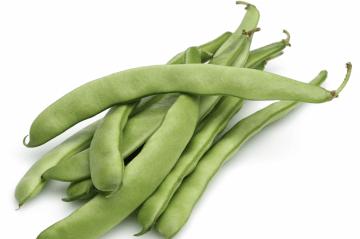 Mascotte filet bush green beans feature