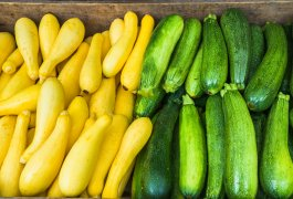 How to Preserve Zucchini and Summer Squash 5 Ways