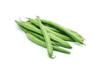Tendergreen snap bush green beans