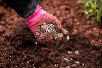 Prevent Food-borne Pathogens When Using Manure in Vegetable Gardens