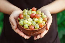 Nutrition Facts about Gooseberries