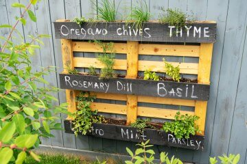 How to Make a DIY Pallet Hanging Garden for Herbs