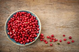 How to Grow Lingonberries and 3 Ways to Use Them