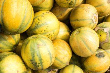 Ha'Ogen Melon