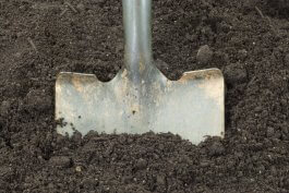 How to Choose the Best Shovel for Your Gardening Needs