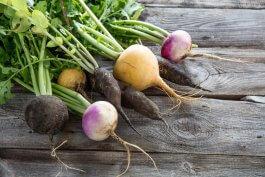 Tips for Growing Root Vegetables Indoors in Pots